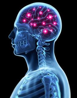 Abstract Neuro Wallpaper #6905875